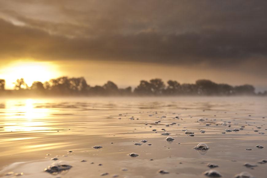 Zittow_Cambser_See_Badestelle_Morgens_Sonnenaufgang_Nebel_Blasen_auf_Wasser_Herbst_DSC8168